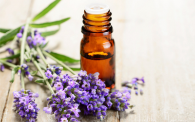 Lavender Oil Uses